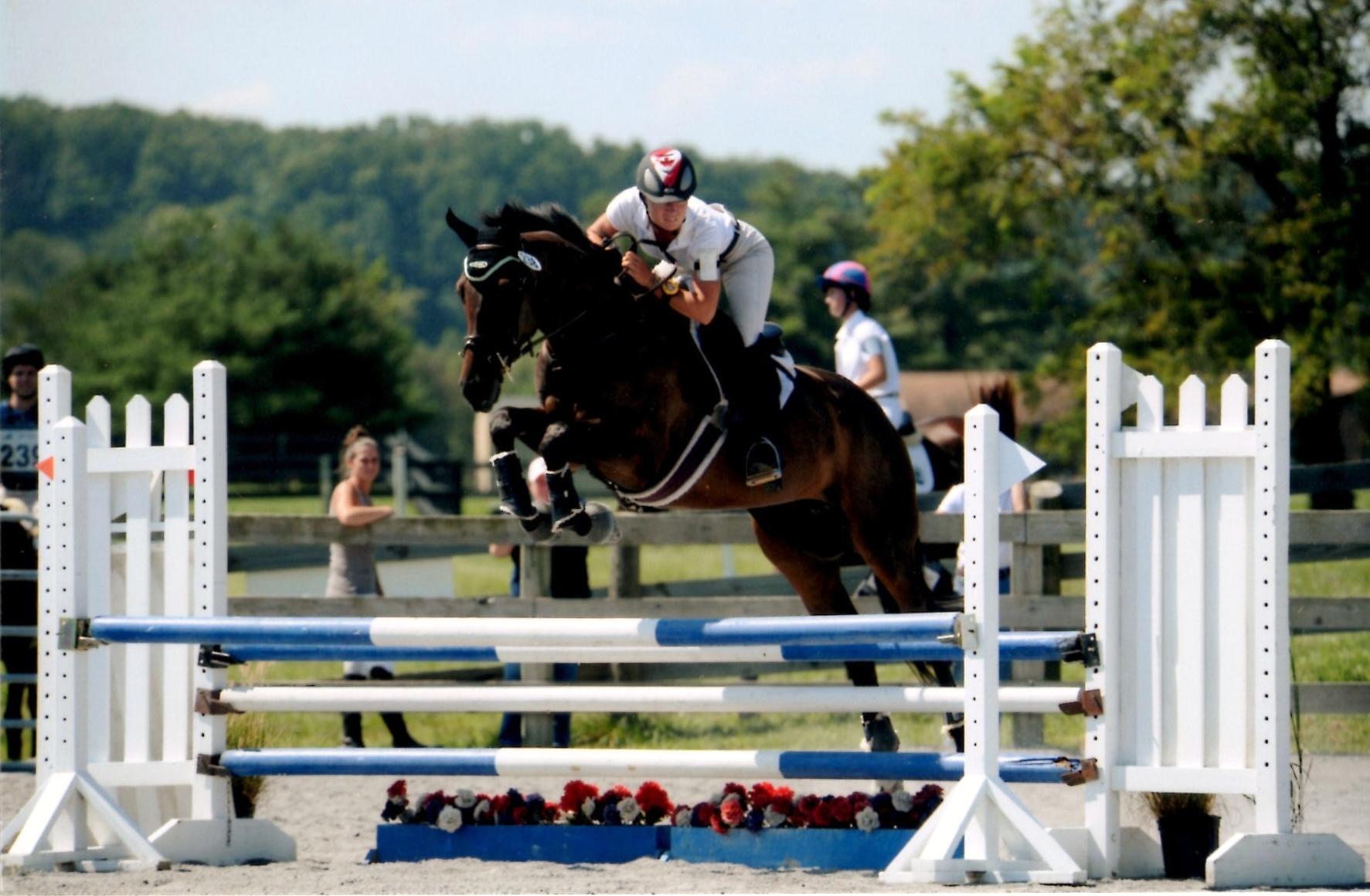 Horses Of Srb Equestrian Srb Equestrian Sports